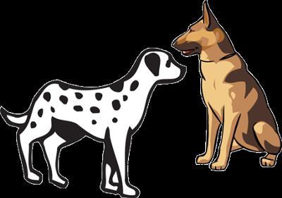 2 chiens