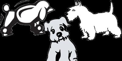 3 small dogs